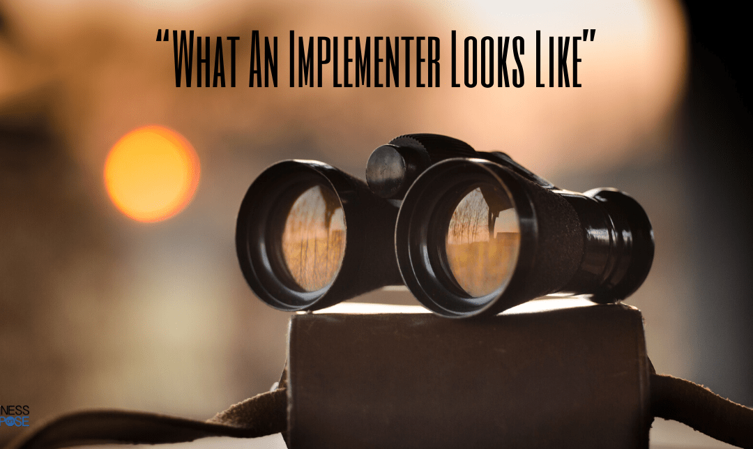 Every Owner Needs An Implementer: Here Is What They Look Like