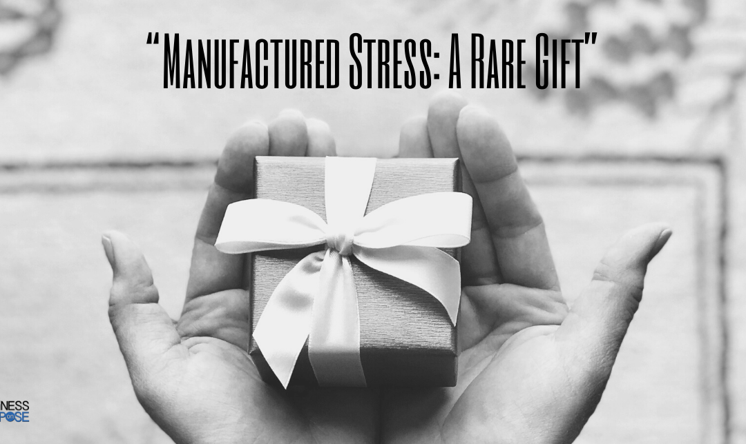 The Value Of Stress And Why You Need To Apply Small Amounts To Your Business :382
